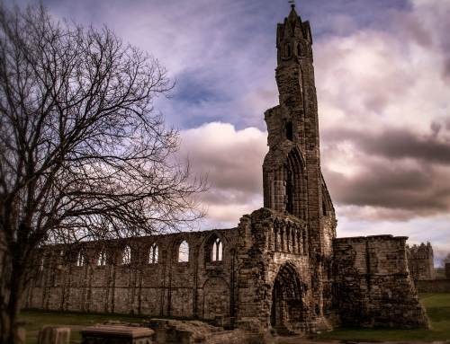 St Andrews Cathedral: Skeletons, Skulls and Sarcophagi